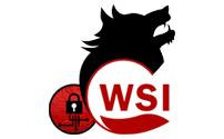 logo-header wsi